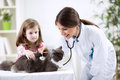 Girl at the veterinary with her cat Royalty Free Stock Photo