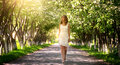 Girl walking in the park summertime Royalty Free Stock Photo