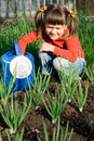 Girl with watering can is sitting near onion patch Royalty Free Stock Photo