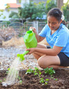Girl watering vegetable plant in home garden field family relaxi Royalty Free Stock Photo