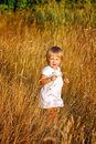 Girl and wheat ears blonde walking through the of at sunset Royalty Free Stock Photo