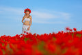Girl in a white dress the poppy field Stock Images