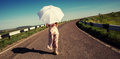 Girl with white umbrella walking along the road sunny day Stock Photography