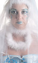 Girl wih creative winter makeup and veil the on white background Royalty Free Stock Photography