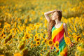 Girl in the yellow field of sunflowers. Royalty Free Stock Photo