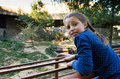 A girl at the zoo looks at the tigers. Royalty Free Stock Photo