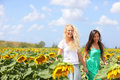 Girlfriends holding hands in sunflower field Stock Images