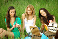 Girlfriends on picnic Stock Photography