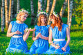 Girlfriends with wreaths on their heads, sitting on a grass Royalty Free Stock Photo