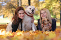 Girls with dogs cute walking Stock Photos