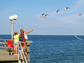 Girls feeding sea gulls Royalty Free Stock Photo