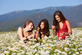 Girls on the flower summer meadow Stock Images