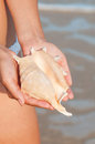 Girls hand holding a shell on the beach Stock Image