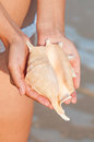 Girls hand holding a shell on the beach Royalty Free Stock Image
