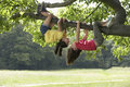 Girls hanging upside down from branch full length of playful tree Stock Images