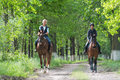 Girls on horseback riding two a young Stock Image