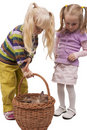 Girls investigating cats in basket Royalty Free Stock Image