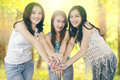 Girls joining hands in the nature group of pretty teenage together while enjoy summer holiday Royalty Free Stock Images