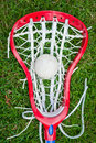 Girls lacrosse head and grey ball on grass Royalty Free Stock Photo