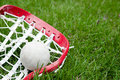 Girls lacrosse head and grey ball on grass Stock Photo