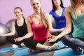 Girls meditate to restore strength and breath group of young women in the gym centre yoga attractive young people fitness sport Stock Photos