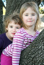 Girls Sitting in a Tree Royalty Free Stock Photography