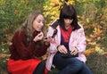 Girls use cosmetology. Royalty Free Stock Images