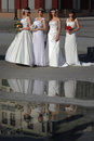 Girls in a wedding dresses belgrade Royalty Free Stock Image