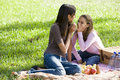 Girls whispering on picnic blanket on grass Stock Photos