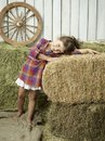 Girlwithhay Royalty Free Stock Photos