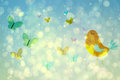 Girly bird and butterfly design in blue Royalty Free Stock Photo