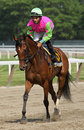 Gitchee Goomie Wins The Mount Vernon Stakes Royalty Free Stock Images