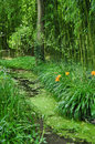Giverny garden of monet the famous painter claude in france Royalty Free Stock Photography