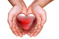 Giving love red heart in hands on white Stock Photography