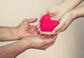 Giving love take care of old mother young female hand a red heart to old hand of a mother Stock Photography