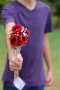 Giving roses someone out towards the camera Royalty Free Stock Photography