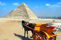 Giza pyramids cairo egypt photo of a pyramid with horsedrawn carriage Royalty Free Stock Image