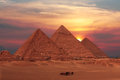 Giza pyramids caravane passing in egypt Stock Images