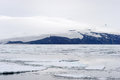 Glacier at antarctica seen from the ship Royalty Free Stock Photos