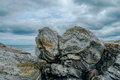Glacier carved rock on the new england coast face millions of years old Royalty Free Stock Photo