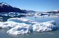 Glacier iceberg near of upsala in argentine patagonia Royalty Free Stock Images