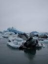 Glacier lagoon jokulsarlon iceland in Royalty Free Stock Image