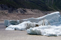Glacier the view of laigu nyingchi tibet china Stock Image