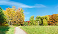 Glade in autumn park Royalty Free Stock Photo
