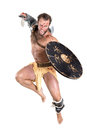 Gladiator Royalty Free Stock Photo