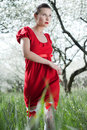 Glamor woman in red dress Royalty Free Stock Images
