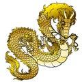 Glamorous golden metal Asian dragon on white