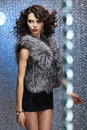 Glamour shapely good looking woman in gray fur waistcoat pretty rich female furry Stock Photos