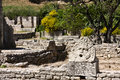 The Glanum Ruin Royalty Free Stock Photo