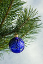 Glass ball on christmas tree Royalty Free Stock Image
